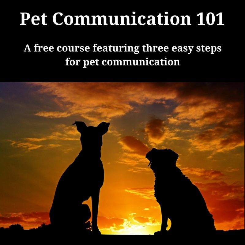 A Free Mini-Course!